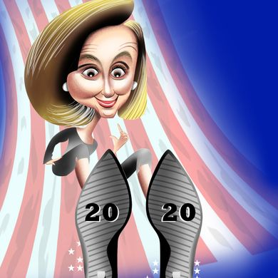 Nancy Pelosi. The Speaker of the United States House of Representatives.